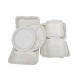 biodegradable eco take out lunch box