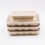 biodegradable bagasse food containers with lid